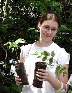 Holding plants 52-S