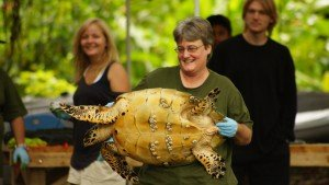 Deb and Turtle